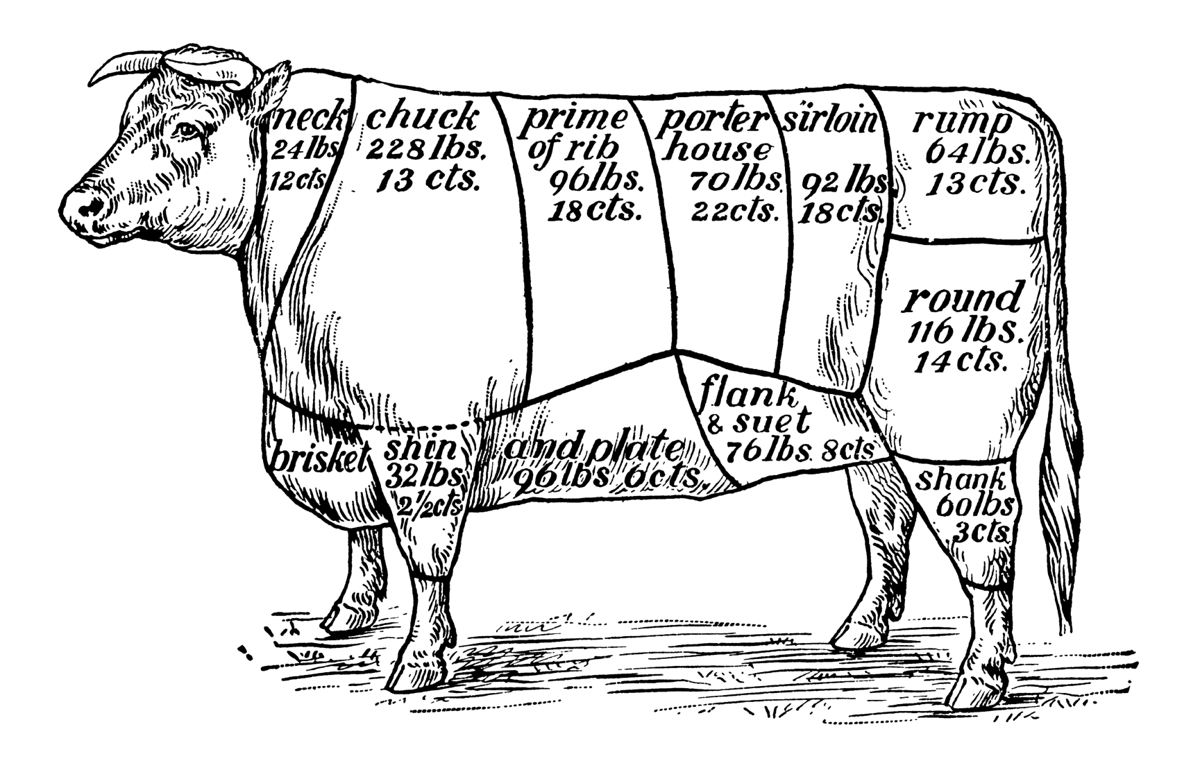 Understanding Cuts of Beef from Everyday Good Thinking, the official blog of @HamiltonBeach