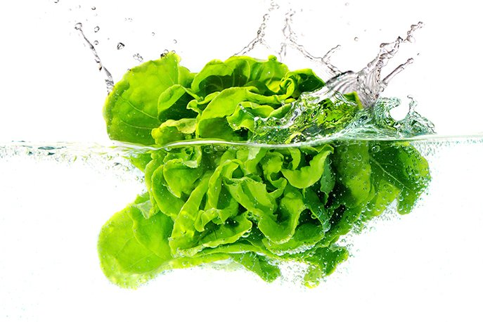 How to Clean and Store Lettuce
